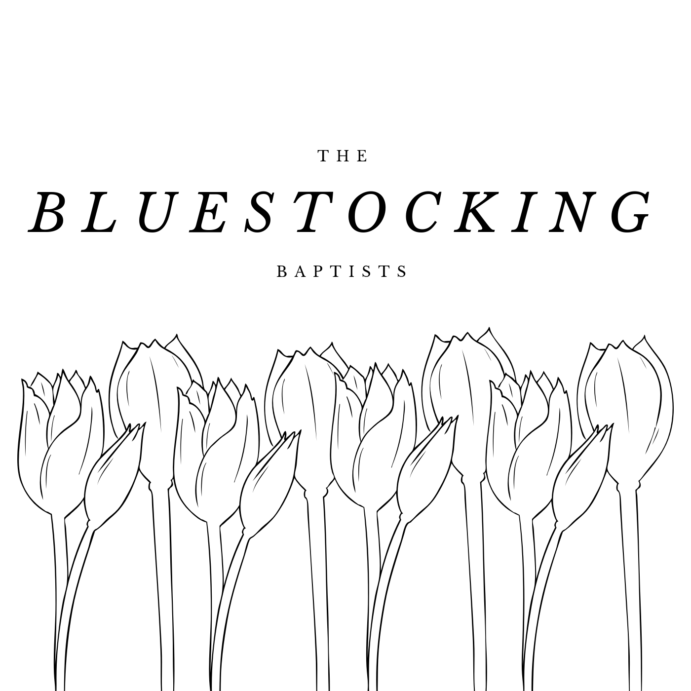 The Bluestocking Baptists
